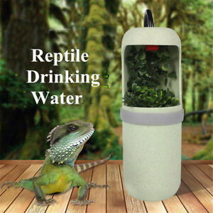 Automatic-Electric-Reptile-Lizard-Chameleon-Water-Drinking-Fountain-Bowl-Filter