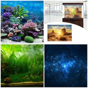 4 Types Aquarium Fish Tank Background Poster Reptile Wall Backdrop