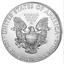 Silber-Eagle-2019-1-OZ-Unze-Ounce-Once-Silver-Argent-USA-US-American-Etats-Unis miniature 2