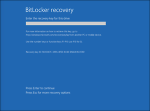Details about Microsoft Bitlocker password unlock removal for computer &  surface pro and more