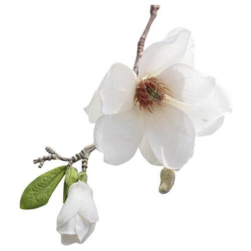 Fashion Artificial Fake Flowers Leaf Magnolia Floral Wedding Bouquet Party C4L0