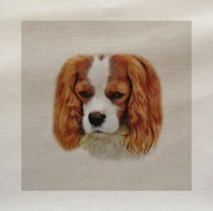 King-Charles-Spaniel-Dog-Cotton-Fabric-Panel-Make-A-Cushion-Upholstery-Craft