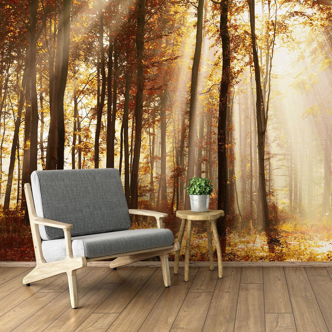 Fototapete Vlies Wald - Tapete Tapeten Fototapeten Fürs Wohnzimmer FDB389