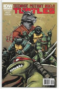 Teenage-Mutant-Ninja-Turtles-2-A-Dan-Duncan-Variant-IDW-1st-TMNT-NM-Eastman