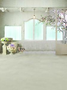 Indoor Scenic Thin Vinyl Wedding Studio Backdrop Photography