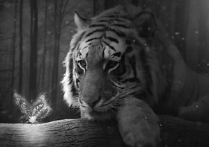 Tiger Fantasy Art Print Black /& White Card or Canvas