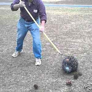 Nut Wizard -Large- Black Walnut Picker Upper Sweet Gumballs ...