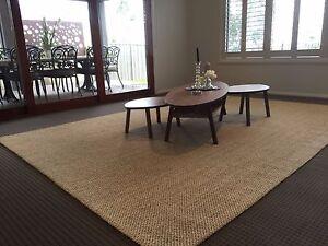 Floor-Rug-Carpet-Modern-Designer-Beige-Jute-Rug-240x330-FREE-DELIVERY