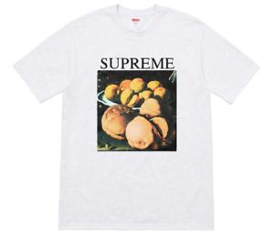 Supreme Still Life Tee Ash Grey FW18 Medium