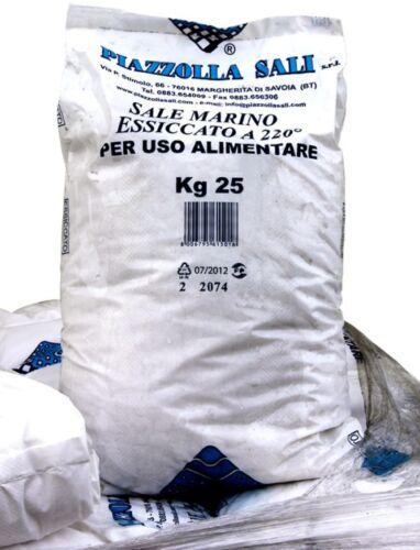 Sale granulare Intex sacco da 25 kg per clorinatore elettrolisi piscina Rotex