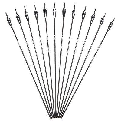 "12x 30.5/"" Linkboy Archery Purple Carbon Arrows 7.6MM Spine340 For Bow under 70lb"