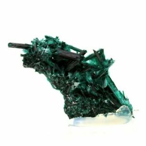 Milpillas Mine Brochantite Sonora 216.1 Ct Mexico