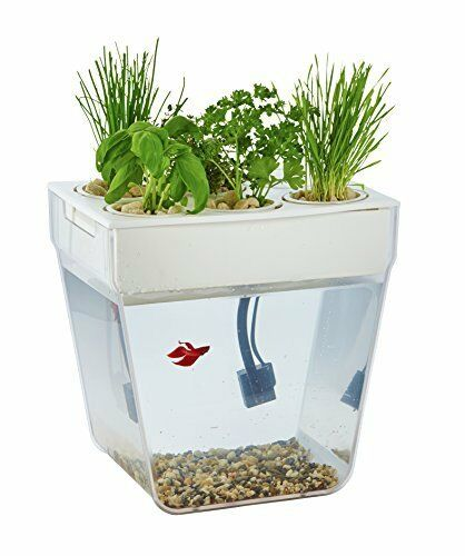 Best Water Garden - The Water Garden aquaponic kit