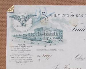 AGRARIA-BOTANICA-DITTA-INGEGNOLI-BELLA-ARTISTICA-INTESTAZIONE-PUBBLICITARIA-039-900