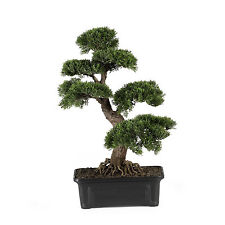 "NEW CEDAR BONSAI 24"" TREE ARTIFICIAL HOUSEPLANT GREEN NEARLY NATURAL FAUX FAKE"