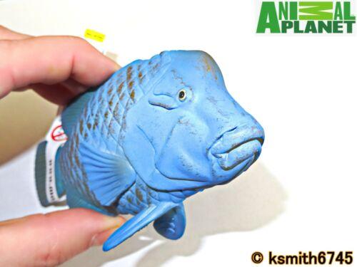Mojo Animal Planet Bleu Mérou solide Jouet en plastique Wild Zoo Mer Poisson Marin NEUF