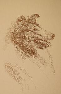 ENGLISH MASTIFF DOG ART PRINT #73 Stephen Kline will add your dogs name free