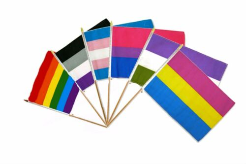 "12x18 12/""x18/"" Wholesale Combo Gay Pride Trans Bi Gender Pan Rainbow 6 Stick Flag"