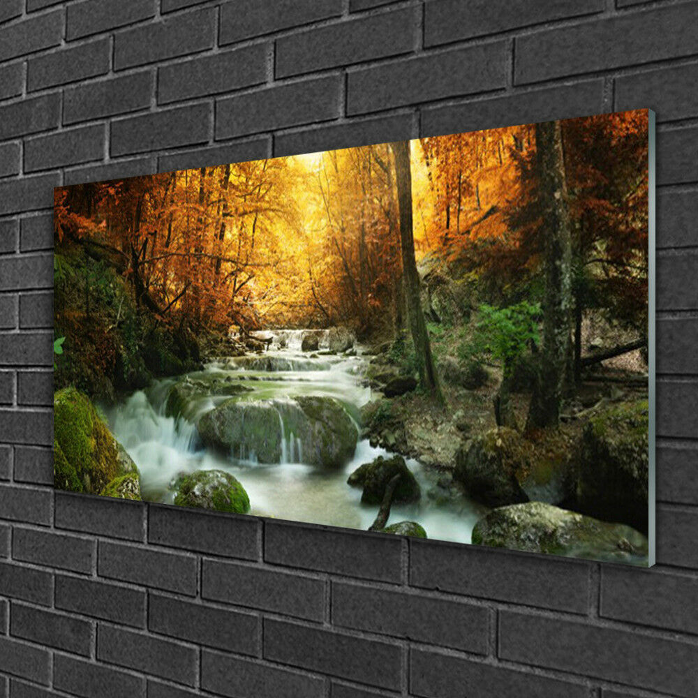 Print on Glass Wall art 100x50 Picture Image Waterfall Forest Stones Nature