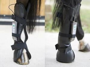 PEMF-HORSE-EQUINE-REAR-LEG-WRAP-PULSED-ELECTROMAGNETIC-FIELD-INJURY-HEALTH-TREAT