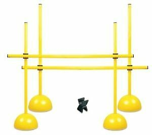 Entrenador Multi Kit Set Entrenamiento De Agilidad Velocidad XLR perro  fitness Cono Aro Polo  Compra calidad 100% autentica