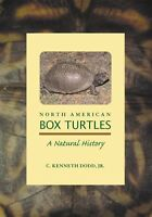 North American Box Turtles Endanger Animal One Of America's Oldest Residents