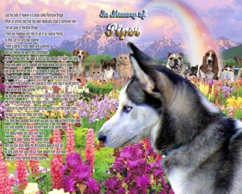 Rainbow Bridge Poem Siberian Husky Dog Memorial Personalized w//Pet/'s Name