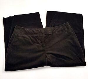 Ann Taylor Loft Womens Size 10 Dark Brown Cotton Capri Marisa Pants EUC