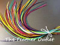 Feather Hair Extensions Lot Grizzly Striped Real Thin Skinny Long Bright Rainbow