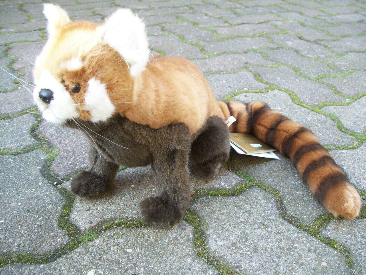 Hansa roter Panda sitzend sitzend sitzend oder stehend plüschtier Stofftier 30 cm rot 6301 6309 75e175