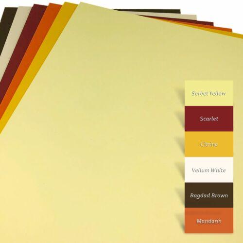Kartonset A4 270 g//m² ~ Bastel-Tonkarton 6 Farben Bastelkarton ~ #7003 48-tlg.