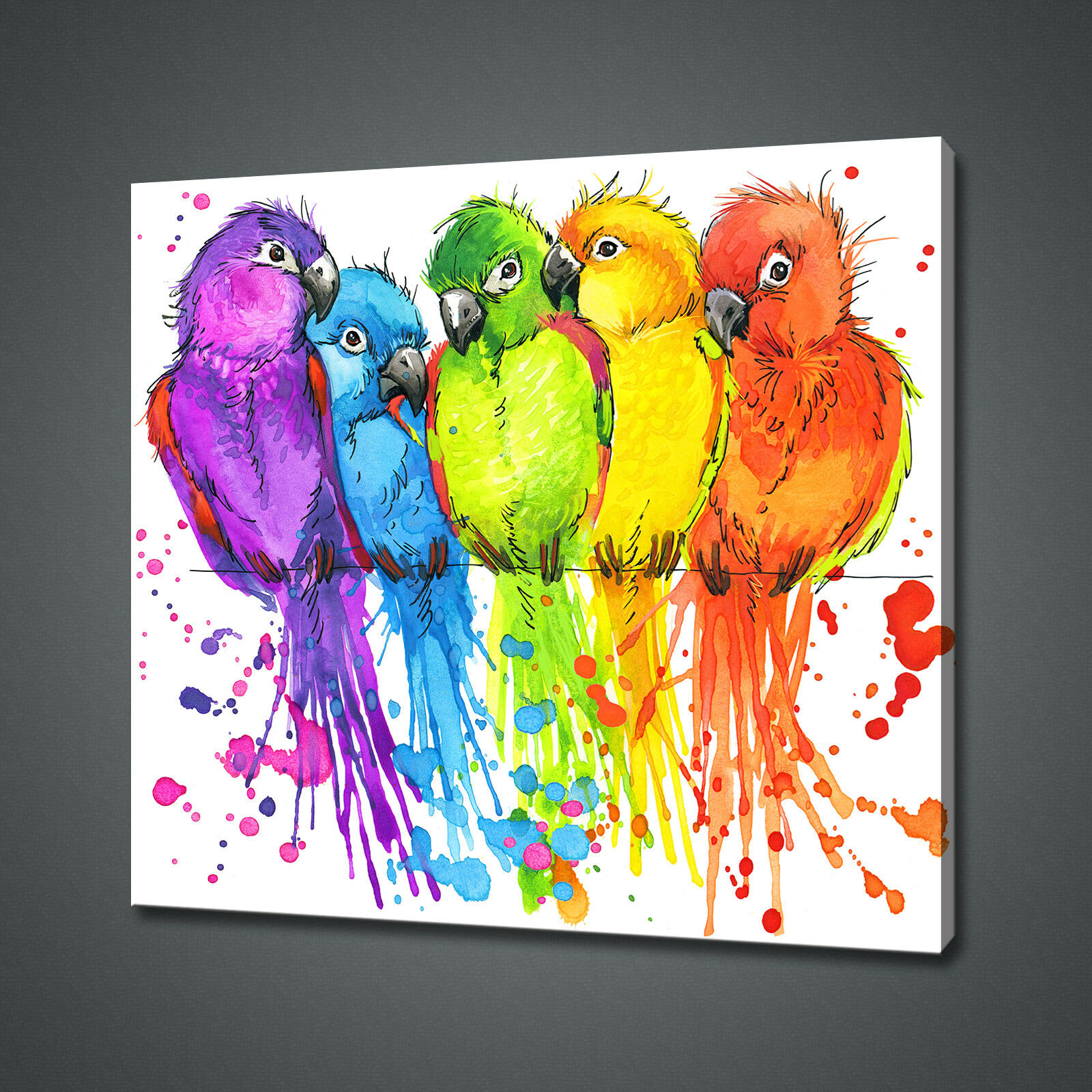 COLOURFUL PARROTS WATERCOLOUR PAINT STYLE CANVAS PRINT WALL ART PICTURE PHOTO