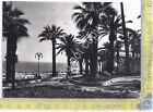 Cartolina - Postcard - San Remo - Passeggiata al mare - 1952