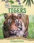 Endangered Tigers by Jane Katirgis (Hardback, 2015)