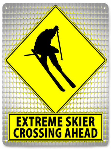 Extreme Skier Metal Street Sign winter sports mancave funny retro decor art 238