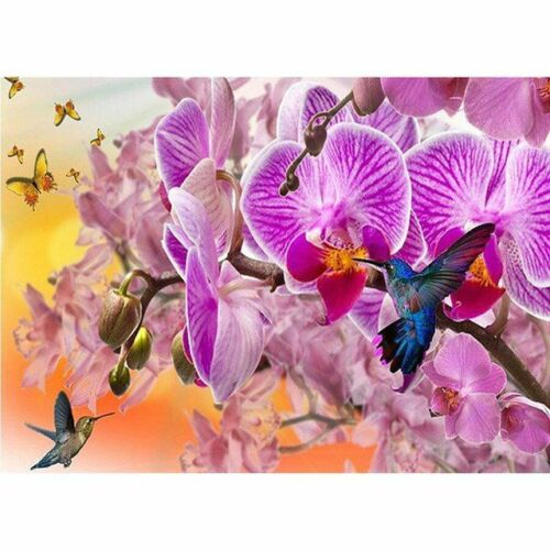Diamond Painting Orchids Flower And Humming Bird Design Portrait Wall Decoration