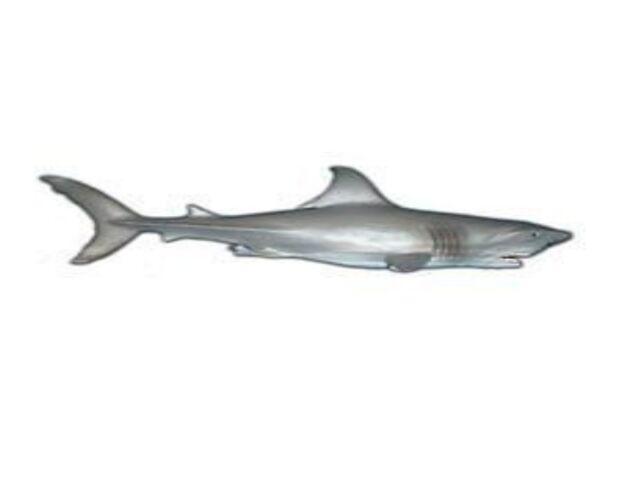 Blanco Tiburón 20cm Serie Animales Marinos Maia & Borges 13026