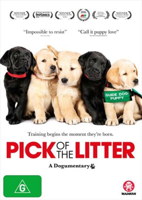 Pick Of The Litter : NEW DVD