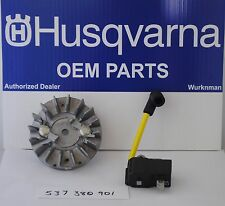 OEM Husqvarna Craftsman MODULE FLYWHEEL KIT 537380901
