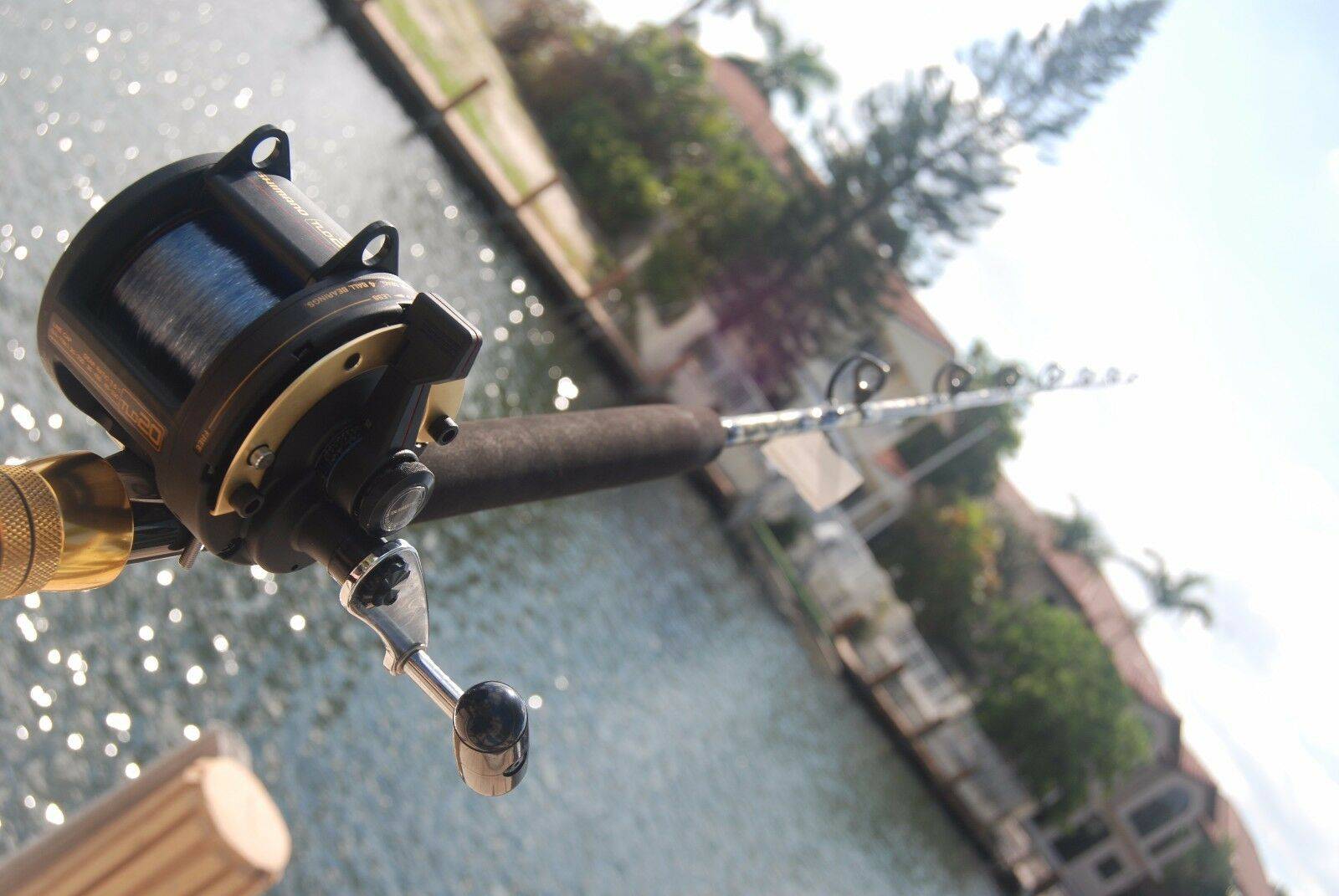 Brand New Shimano TLD 20 Reel w CHAOS ECL 15-30 Stand-up Rod COMBO