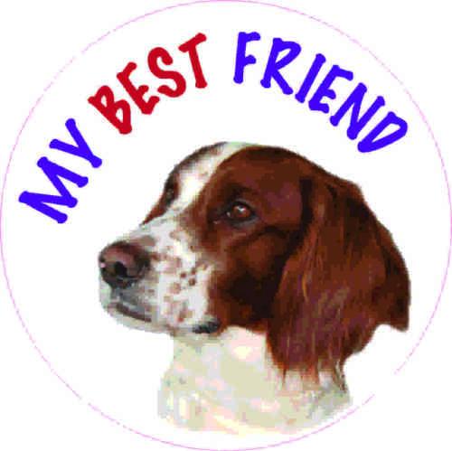 van decal sticker Pet Animal Lover Present 2 x IRISH SETTER Dog vinyl car