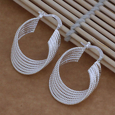 Chic Fashion Women Lady Jewelry Solid Silver Big Hoop/Dangle/Stud Earring+Box