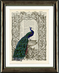 Old-Antique-Book-page-Art-Print-Vintage-Peacock-3-Dictionary-Page-Wall-Art