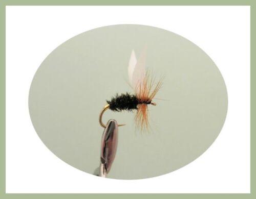 6 Named Varieties Dry Trout flies 18 Pack Fly Fishing Alder /& More Adams