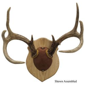 Walnut Hollow Antler Mounting Kit Solid Oak 38324 | eBay