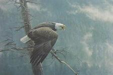 """**Robert Bateman """"AIR, FOREST & WATCH""""-Bald Eagle-Wildlife-Alaska-Forest-Art**"""