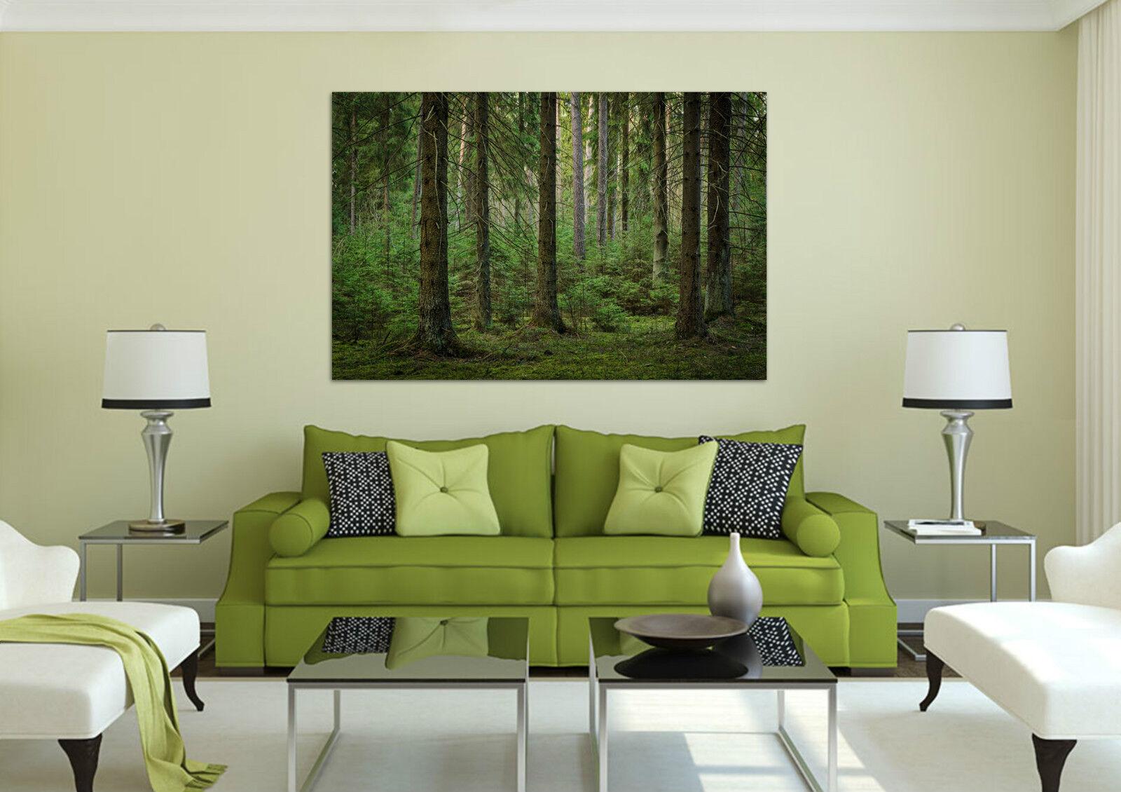 3D Das grün der Wälder 465 Fototapeten Wandbild BildTapete AJSTORE DE Lemon