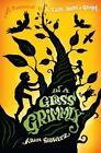 In a Glass Grimmly by Adam Gidwitz (Hardback, 2012)