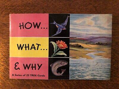 L25 CARDS BIBBY-FULL SET ISN/'T IT STRANGE