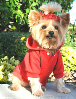 Xs Dog Sweatshirt Chihuahua Teacup Yorkie Red Dog Hoodie Jumper Clothes Ships Us
